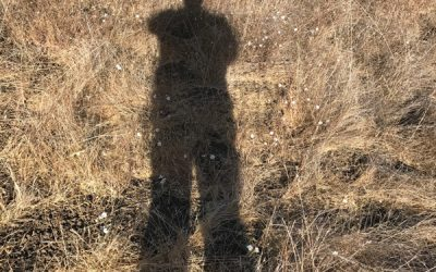 The Shadow Knows with Rev. John Riley